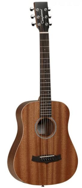 Tanglewood TW2 T Winterleaf western-guitar - en akustisk western-guitar til børn over 9 år